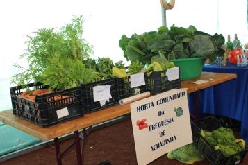 Feira de Empreendedorismo na Vila do Nordeste